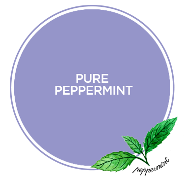 Dilmah Infusion Pure Peppermint Tea