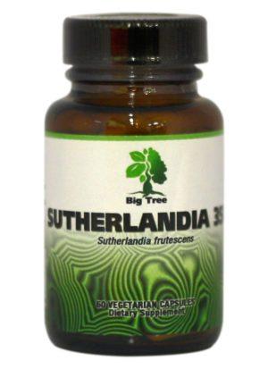Big Tree African Herbal MedicineSutherlandia