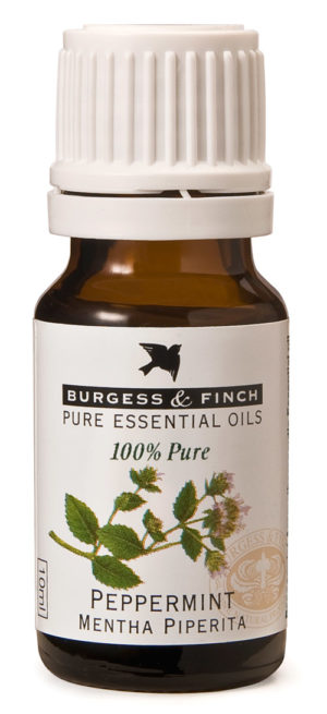Burgess & Finch Peppermint Oil