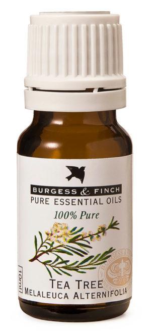 Burgess & Finch Tea Tree Oil