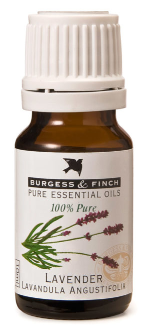 Burgess & Finch Lavender Oil