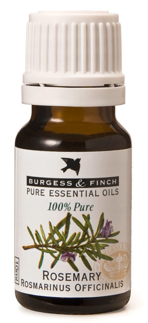 Burgess & Finch Rosemary Oil
